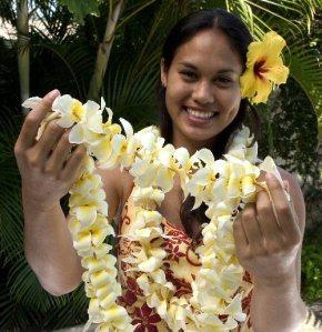 accueil hawaïen4