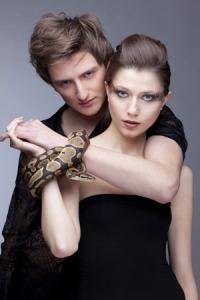 h-f-serpent